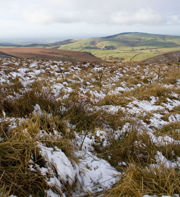 View from the Cat and Fiddle, Macclesfield