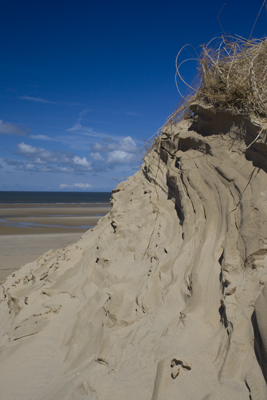 Dunes at Forby